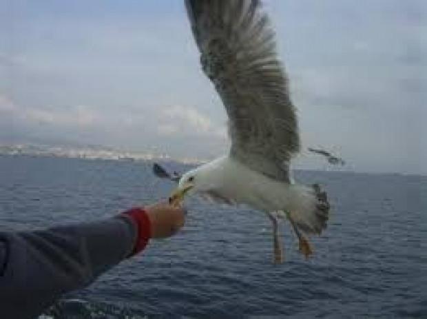 İşte İstanbul'da 10 TL'ye yapabileceğiniz şeyler - Page 1
