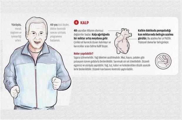 İşte organlarımızın şaşırtan yaşlanma süreleri - Page 3