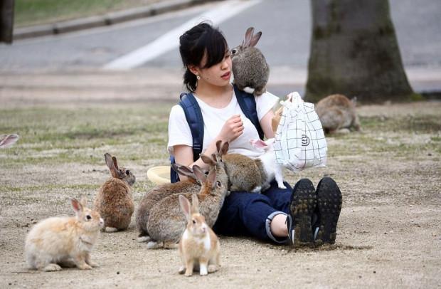 Japonya hakkında ilginç ve tuhaf bilgiler - Page 4