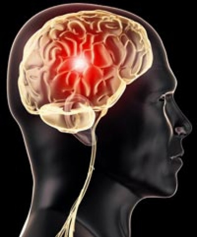 Kadın beyni mi erkek beyni mi? - Page 2