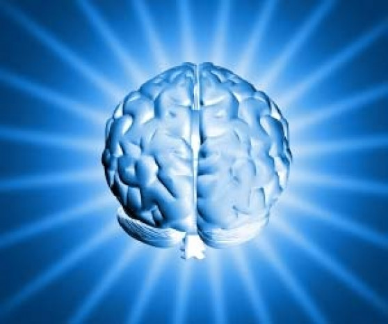Kadın beyni mi erkek beyni mi? - Page 4