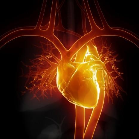 Kalbinizle ilgili bilmediğiniz 22 gerçek - Page 3