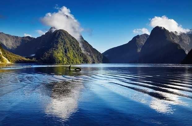 Kayıp kıta Zelandiya'nın gizemi çözülecek - Page 1
