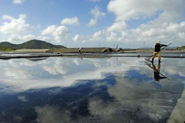 Koreliler deniz tuzunu böyle üretiyor - Page 3