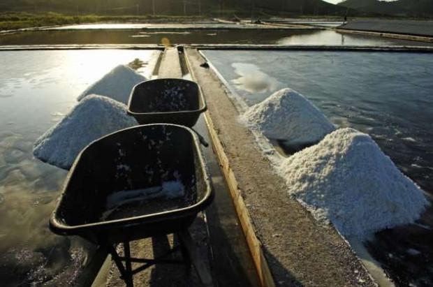 Koreliler deniz tuzunu böyle üretiyor - Page 4