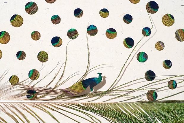 Kuş tüyünden yapılmış yükte hafif sanatta ağır muazzam eserler - Page 4