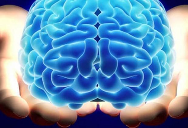Laboratuvarda insan beyni üretildi - Page 2
