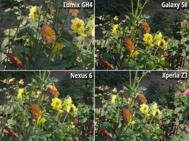 Lumix GH4, Nexus 6, Xperia Z3 ve  Galaxy S6 kamera karşılaştırması - Page 1