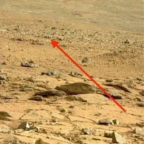 Mars'ta Kertenkele mi görüldü? - Page 1