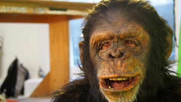 Maymun adam - Page 3
