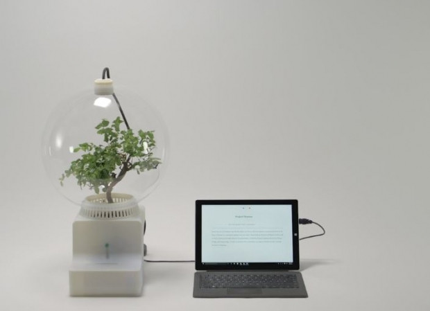Microsoft bitkileri konuşturdu - Page 1