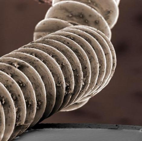 Mikroskop gözüyle bakın! - Page 3
