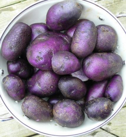 Mor patates gördünüz mü? - Page 2