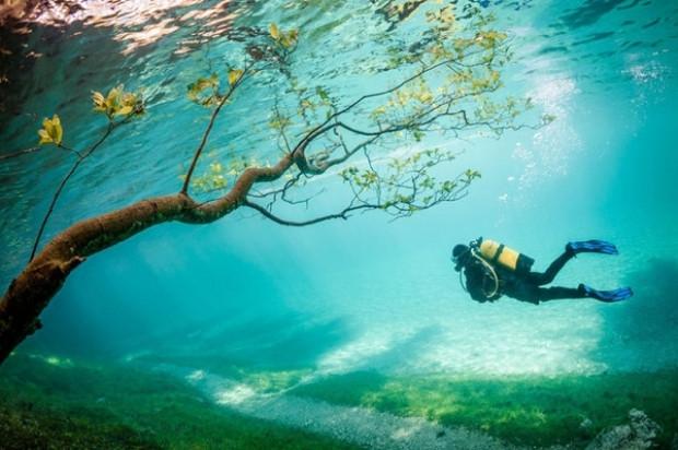 National Geographic fotoğraf yarışmasında en iyiler! - Page 2
