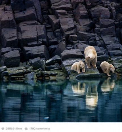 National Geographic'in Instagram'dan paylaştığı en iyi fotğraflar - Page 1
