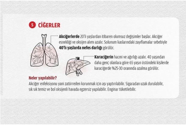 Organlarınızın ömrünü biliyor musunuz? - Page 4