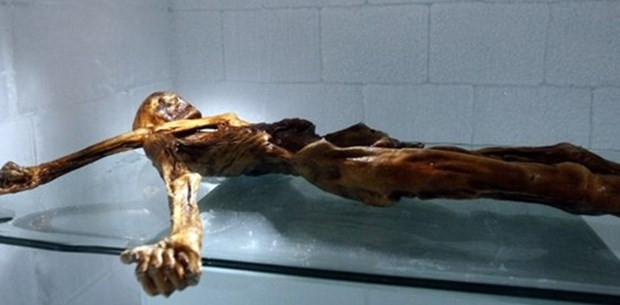 Ötzi'nin bir sırrı daha çözülüyor - Page 1