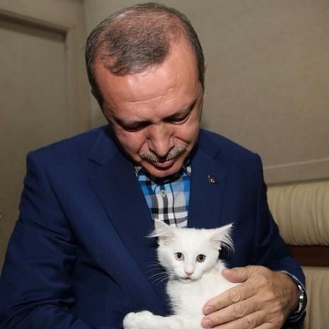 Recep Tayyip Erdoğan'ın Instagram hesabından paylaştığı fotoğraflar - Page 4