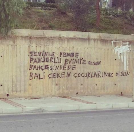Sadece Türkiye'de göreceğiniz duvar yazıları! - Page 1