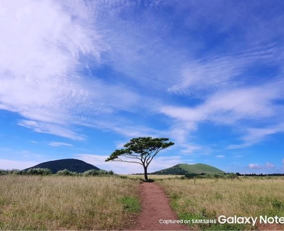 Samsung Galaxy Note 7 ile farklı ışıklarda çekilen fotoğraflar - Page 4
