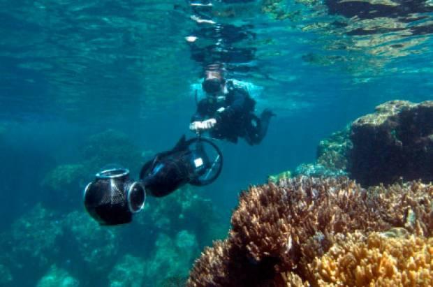 Barrier Reef sualtı manzaraları - Page 3