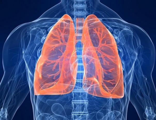 Sigarayı bıraktıktan sonra vücutta oluşan etkiler - Page 4