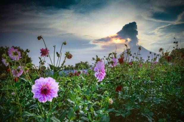 Sinabung Yanardağı'ndan sıcak görüntüler - Page 3