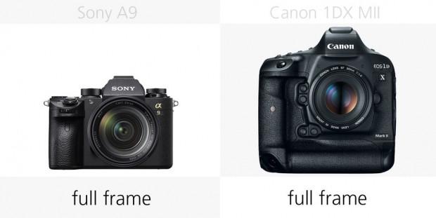 Sony A9 ve Canon 1DX Mark II karşı karşıya - Page 3