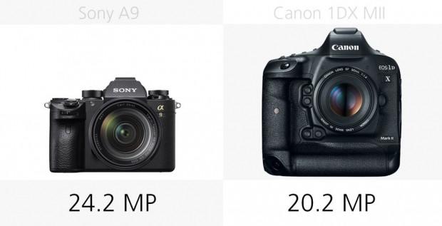 Sony A9 ve Canon 1DX Mark II karşı karşıya - Page 4