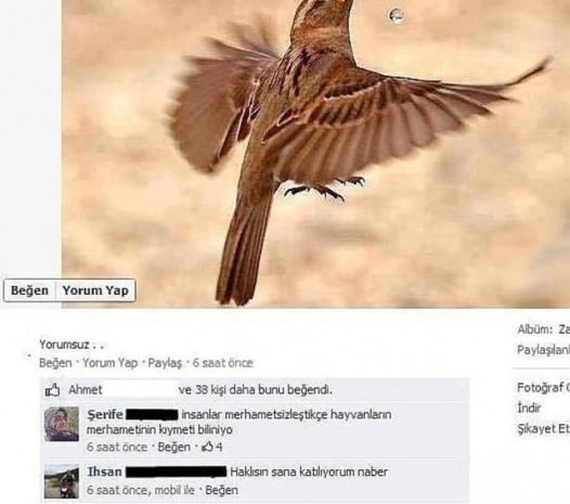 Sosyal medyanın en komik yorumları - Page 1