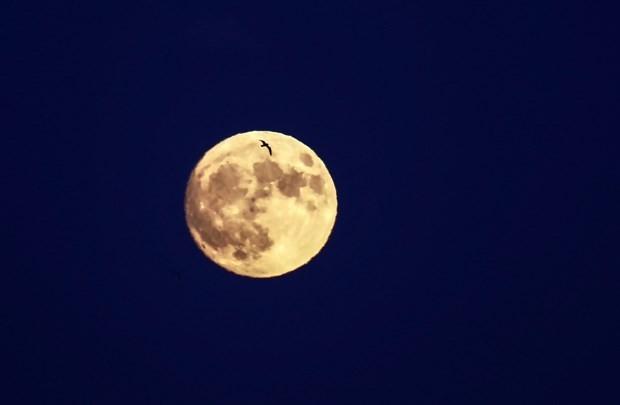 Süper Ay'dan ilk görüntüler geldi! Türkiye'de ne zaman görünecek? - Page 2