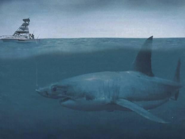 Tarih öncesi denizaltının inanılmaz yaratıkları! - Page 3