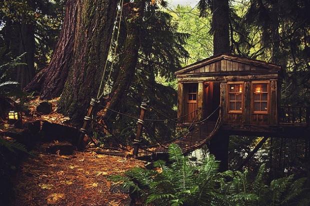 Tasarım harikası ağaç evler! - Page 4