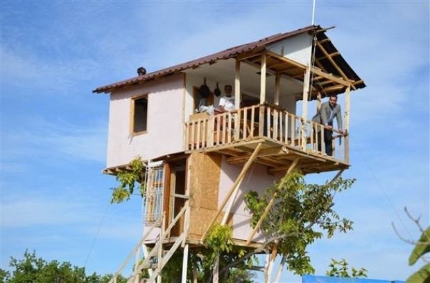 Malatya'da ceviz ağacının üzerine ev yapıldı! - Page 4