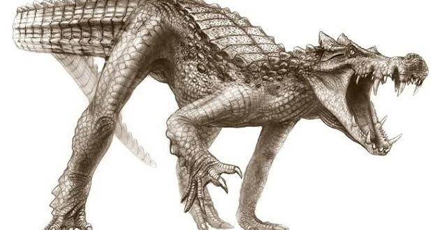 Torunları hala yaşayan dinozorlar - Page 2