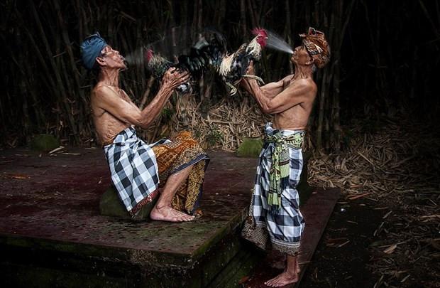 World Photography Awards'un kazananları belli oldu - Page 4