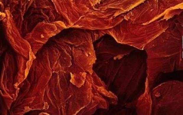 Yediğimiz yiyeceklerin mikroskobik görüntüleri - Page 4