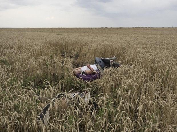 'Yılın Fotoğrafı' ödülü sahibini buldu - Page 1