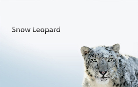 1308947657_snow-leopard-3.jpg