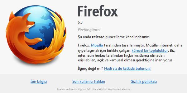 1313316250_firefox6detay.jpg