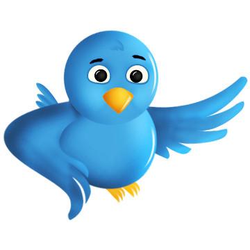 1328477306_twitter-icon.jpg