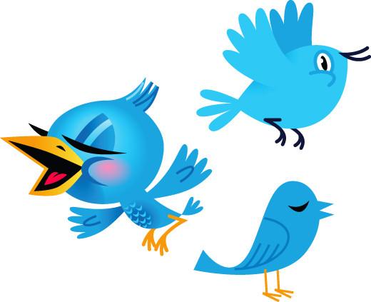 1329406905_twitterbirdswebpreview.jpg