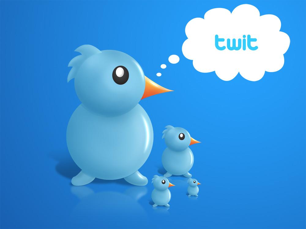 1329406946_tweetbird.jpg