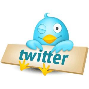 1332037151_twitter.jpg