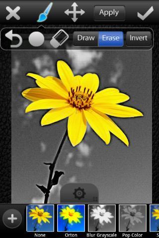 Высокий Студия PicsArt.  PicsArt, луюший редактор рисунков, фотостудия в...