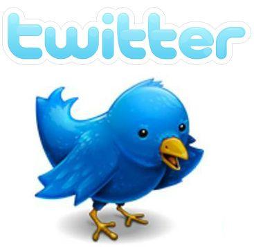 1339407933_twitter.jpg