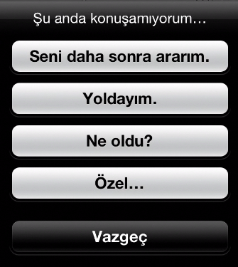 1339492621_iphoneturkey-biz-ios6-beta-telefon-20.png