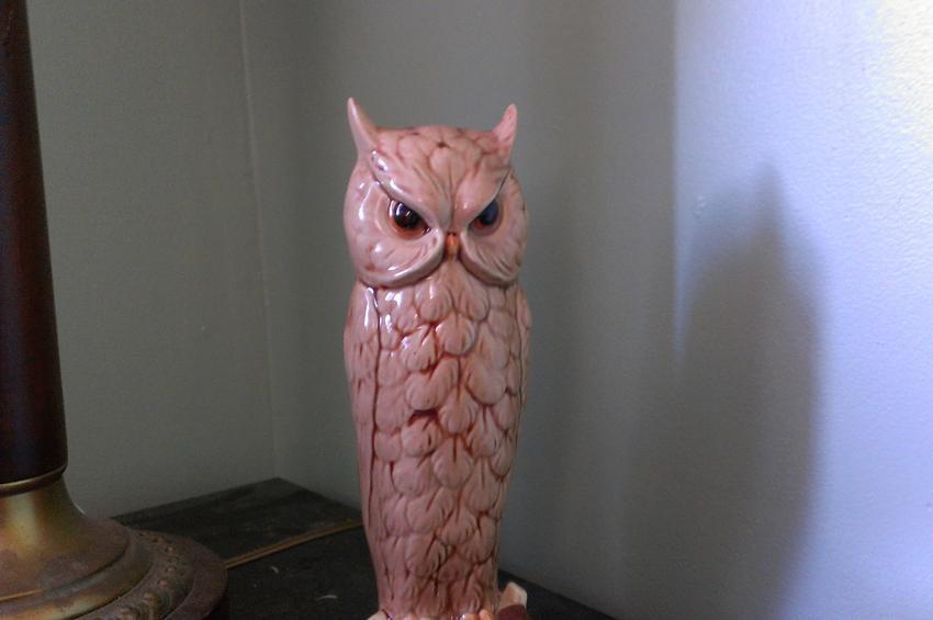 1340180783_htc-evo-4g-lte-review-camera-inside-owl.jpg