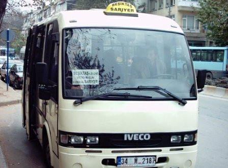 1345558925_minibus1.jpg