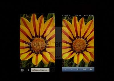 1360239072_blackberry-z1-vs-apple-iphone-5-015-screen-kopyala.jpg